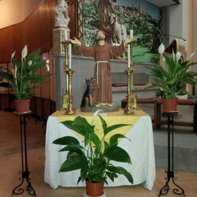 Serafico Padre San Francesco 2017