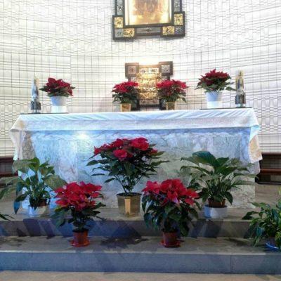 Altare Cappella Natale 2017